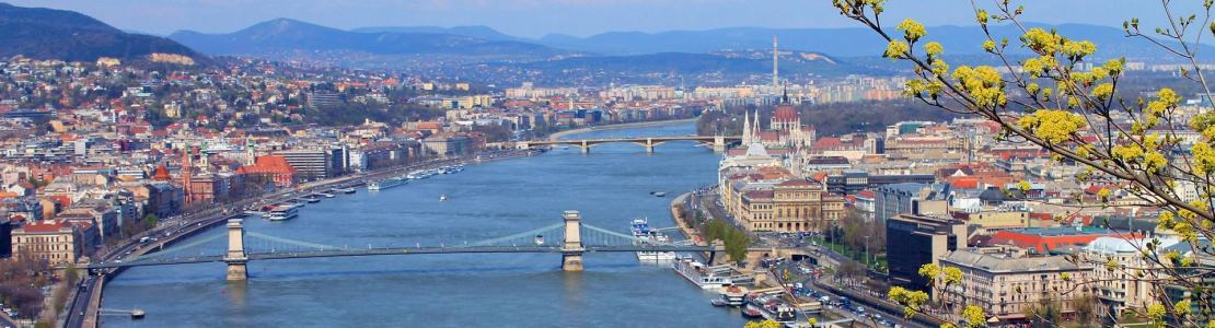 Top singles river cruises offers